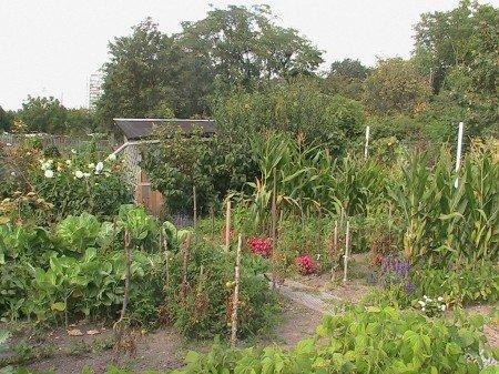 jardinsouvriers1pv.jpg
